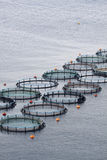 Aquaculture. In a deep sea of Peloponesse, Greece Stock Image