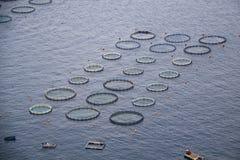 Aquaculture. Aquaculturing in a quiet coast in Greece Stock Photo