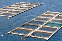 Aquaculture. Fish farms in Peloponesse, Greece Royalty Free Stock Images