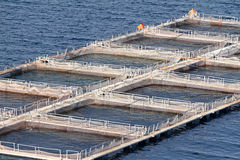 Aquaculture. Fish farms in Peloponesse, Greece Royalty Free Stock Photos