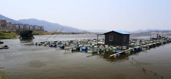 Aquaculture Royalty Free Stock Photo