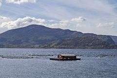 Aquaculture in Norway Royalty Free Stock Photos