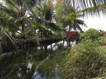 Aquaculture systems, extensive tiger shrimp culture farm royalty free stock photos