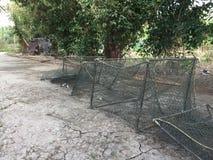 Aquaculture systems, extensive tiger shrimp culture farm royalty free stock photography