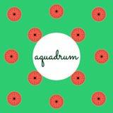 Aquadrum di percussione su fondo colorato con testo Fotografia Stock Libera da Diritti
