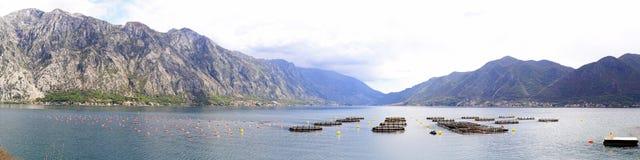 Aquafarming Μαυροβούνιο Στοκ φωτογραφίες με δικαίωμα ελεύθερης χρήσης