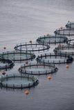 Aquakultur Lizenzfreie Stockfotos