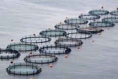 Aquakultur Lizenzfreie Stockfotografie