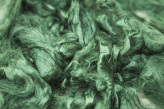 Aquamarine green piece of Australian sheep wool Merino breed close-up on a white background Royalty Free Stock Photo