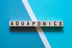 Aquaponics word concept on cubes