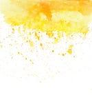 A aquarela amarela do vetor chapinha Imagem de Stock