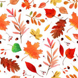Aquarela Autumn Leaves Set Imagens de Stock Royalty Free