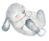 Aquarela bonito do coelho Foto de Stock Royalty Free