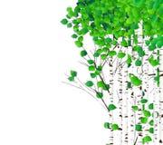 Aquarela da floresta do vidoeiro ilustração do vetor