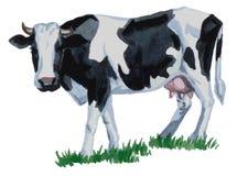 Aquarela da vaca Foto de Stock Royalty Free