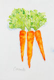 Aquarela das cenouras pintada ilustração do vetor