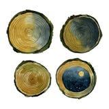 Aquarela de madeira dos cortes amarelos diferentes ilustração royalty free