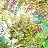 Aquarela do dinossauro Dinossauro, dinossauro exótico tropical da ilustração do fundo da floresta ilustração stock
