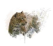Aquarela do retrato do leopardo ilustração stock
