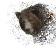 Aquarela do urso de Brown ilustração stock