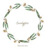 Aquarela, elementos decorativos Ilustração do Vetor