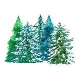 A aquarela evegreen a ilustração das árvores do abeto vermelho com a neve, isolada no fundo branco Paisagem da floresta do invern ilustração stock