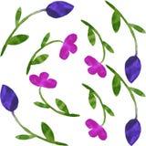 Aquarela floral sem emenda do teste padrão Fotos de Stock Royalty Free
