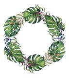 Aquarela pintado à mão Monstera e grinalda das folhas de palmeira Fotografia de Stock Royalty Free