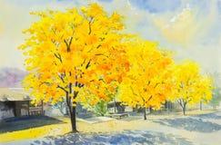 A aquarela que pinta a cor amarela, alaranjada do goldentree floresce ilustração do vetor