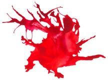 A aquarela seguida bonita chapinha Imagem de Stock