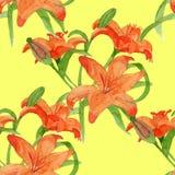 Aquarela sem emenda do teste padrão de Lili Imagens de Stock Royalty Free