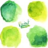 A aquarela verde pintou manchas do vetor ajustadas Foto de Stock