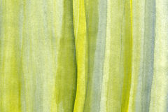Aquarelas verde e amarelo Fotos de Stock Royalty Free