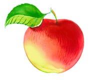 Aquarell Apple Lizenzfreie Stockbilder