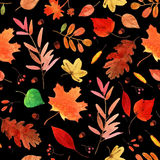 Aquarell Autumn Leaves Set Stockfoto