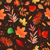 Aquarell Autumn Leaves Set stock abbildung