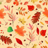 Aquarell Autumn Leaves Set Lizenzfreies Stockbild