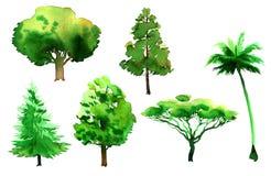 Aquarell-Baum-Satz Lizenzfreies Stockfoto
