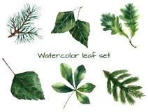 Aquarell-Blätter Lizenzfreie Stockbilder