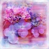 Aquarell-Blumen-Garten-weiche schäbige Einklebebuch-Seite Lizenzfreies Stockbild