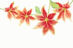 Aquarell, das orange rosarote Farbe der Orchideenblume malt stockfotografie
