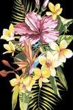 Aquarell, das tropischen Blumenstrauß mit exotischen Blumen malt ENV 10 Stockfotos