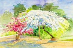 Aquarell, das ursprüngliches Landschaftsrosa, weiße Farbe von Papierblumen malt Stockfotografie