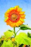 Aquarell einer Sonnenblume in einem blauen Himmel Stockbilder