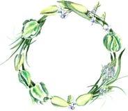 Aquarell-Hand gezeichneter weißer Tulpen-Blumenstrauß-Kranz Lizenzfreie Stockbilder