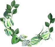 Aquarell-Hand gezeichneter weißer Tulpen-Blumenstrauß-Kranz Stockbilder