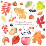 Aquarell-heller Herbst mit bunten Blättern lizenzfreie abbildung