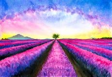Aquarell-Malerei - Lavendel-Feld mit Galaxiehimmel vektor abbildung