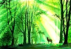 Aquarell-Malerei - Rotwild in den Wäldern lizenzfreie abbildung