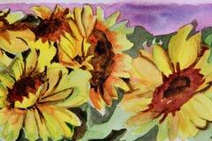 Aquarell mit Blumen - Sonnenblume Lizenzfreie Stockfotos